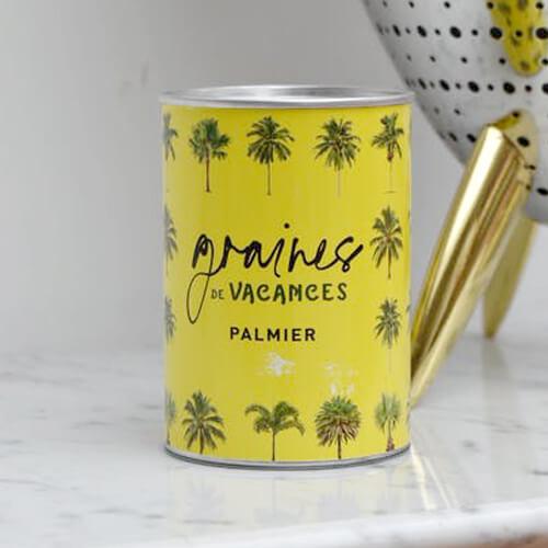 Graines de vacances à faire pousser - Palmier